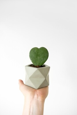 Palua Marble Plant Pot Medium - Olive Green (plant not included)