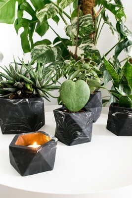 House Raccoon | Vand Tealight/ Airplant holder - Black Marble
