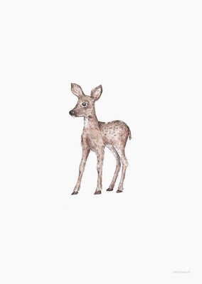 Inkylines | Fawn - Postcard or A5 poster with or without wooden frame