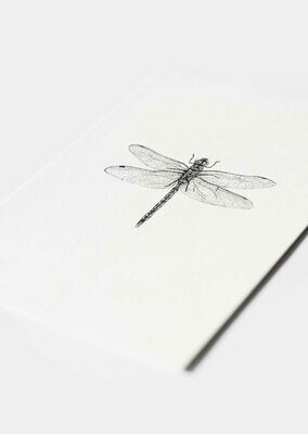 Inkylines | Dragonfly - Mini Card or A6 (postcard) with or without wooden frame