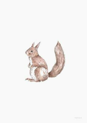 Inkylines | Squirrel - Mini Card or A6 (postcard) with or without wooden frame