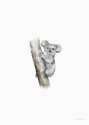 Inkylines | Koala - A6 (postcard) with or without wooden frame