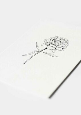 Inkylines | Peony - A6 (postcard) with or without wooden frame