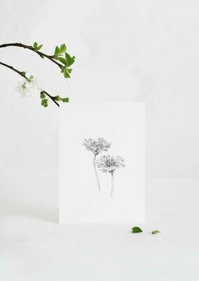 Inkylines | Cornflower - A6 (postcard) with or without wooden frame