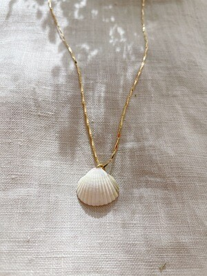 Olá Lindeza  | Anixa necklace with Portuguese shell (24k gold-plated sterling silver)