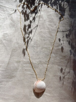 Olá Lindeza  | Creiro necklace with Portuguese Shell (24k gold-plated sterling silver)