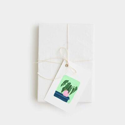 pink cloud studio   Begonia Maculata Mini Card (6 x 9 cm)
