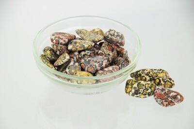 Leopard Skin Jasper Tumbled Stone