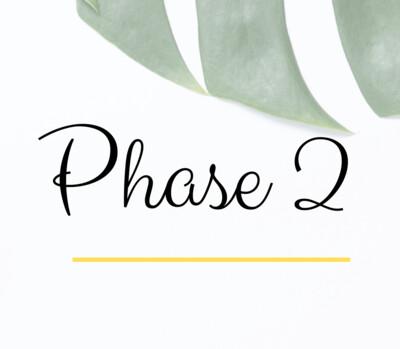 Post Natal - Phase 2 (week 7-12)
