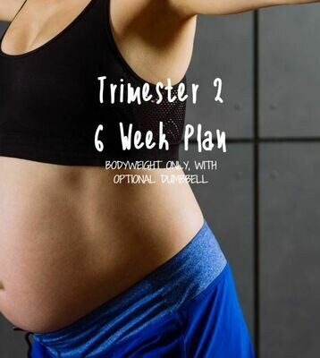 Trimester 2 Body Weight Workout 6 Weeks