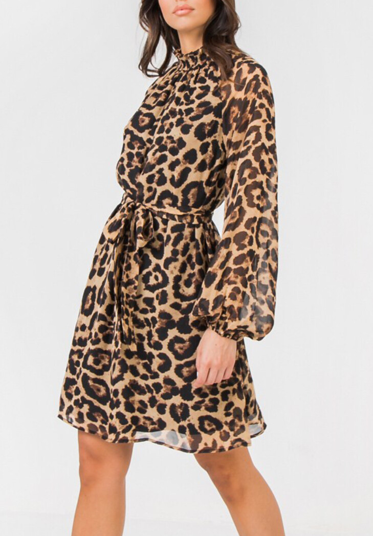 Mia Leopard Dress