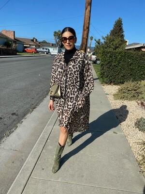 Amy Hoodie Dress
