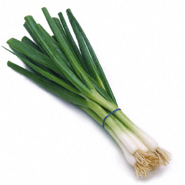 Green Onions - Vitruvian Farms