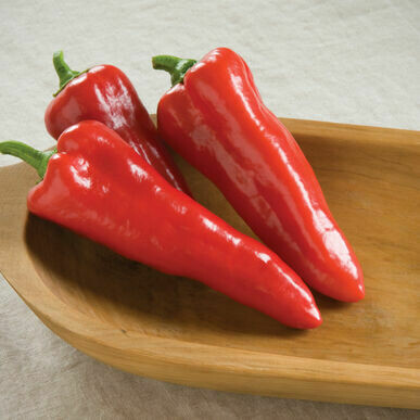 Red Carmen Pepper - Vitruvian Farms