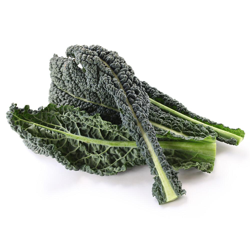 Kale (bunch) - Vitruvian Farms