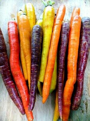 Rainbow Carrots (3lb) - Driftless Organics