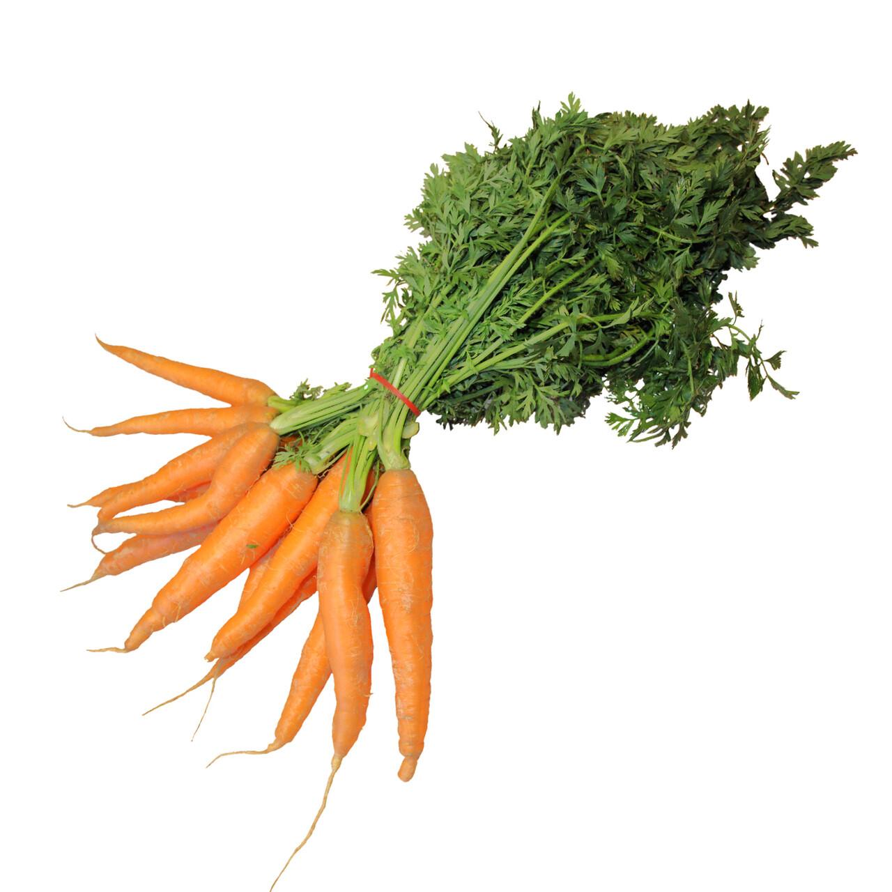 Carrots (lb) - Vitruvian Farms