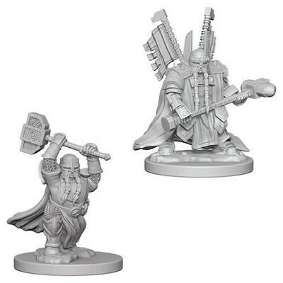 D&D Miniatures: Dwarf Paladin