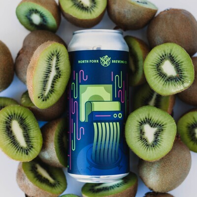 Throw Money At It Sour IPA: 4 Pack