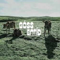Góss - Entíð LP