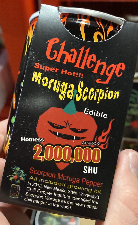 Maruga Scorpion DIY Plant In Can