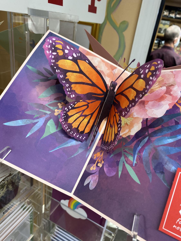 Love Pop Monarch Butterfly
