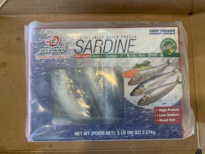 Sardines 5 POUNDS FROZEN