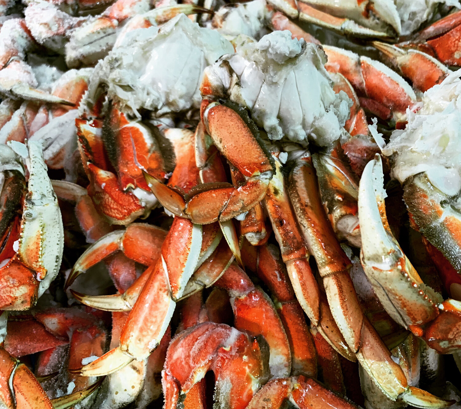 DUNGENESS CRAB CLUSTERS 2.25 Pounds Bag