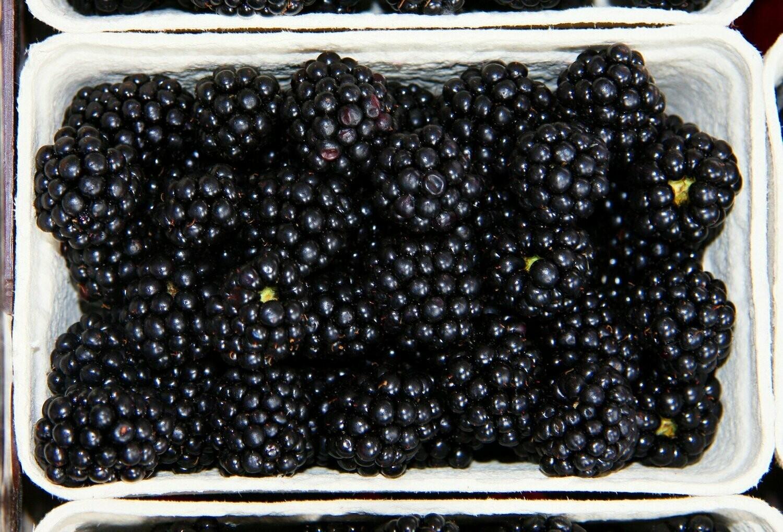 125g Blackberries