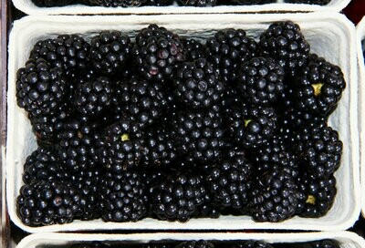 125g Blackberries