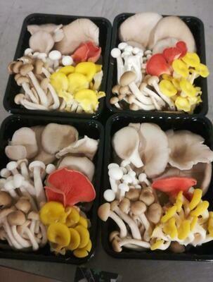 250g Mixed Mushroom