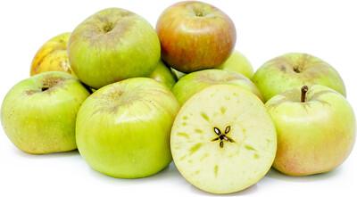 500g Bramley Apples