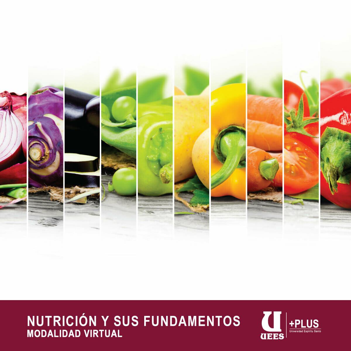 NUTRICIÓN Y SUS FUNDAMENTOS
