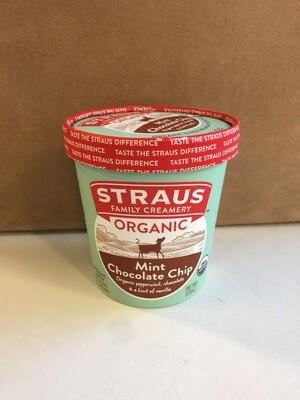 Frozen / Ice Cream Pint / Straus Organic Mint Chip