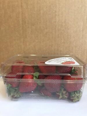 Produce / Fruit / Organic Strawberries, 1 lb