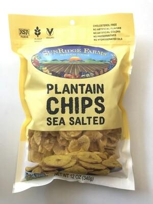 Bulk / Snack / Crispy Roasted & Salted Plantain Chips, 12 oz