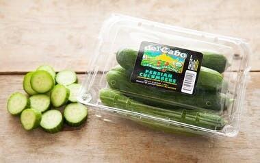Produce / Vegetable / Organic Persian Cucumbers, 1lb