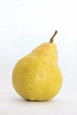 Produce / Fruit / Organic Bartlett Pear