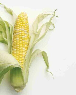 Produce / Vegetable / Organic Corn on the Cob, Bi-Color