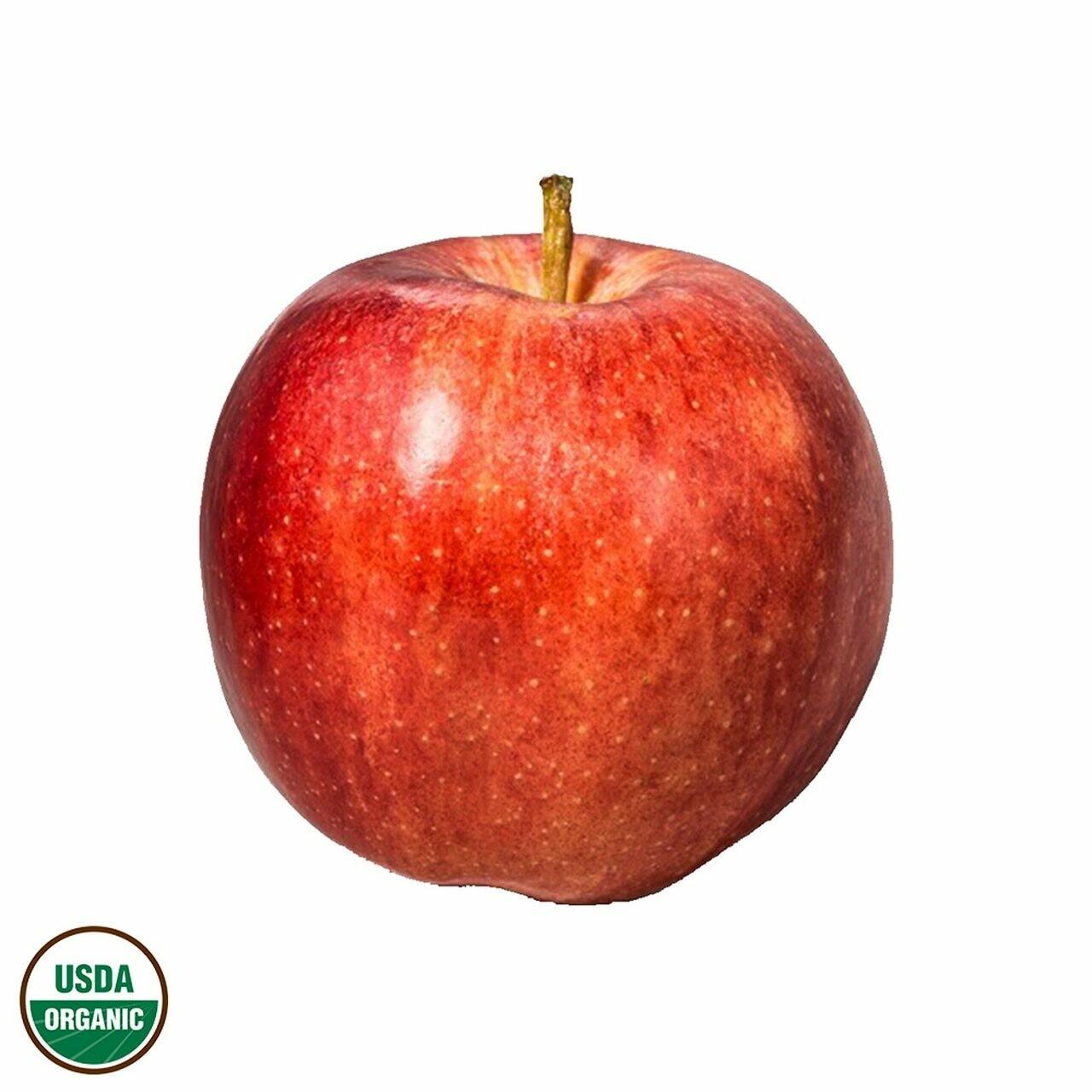 Produce / Fruit / Organic Gala Apple