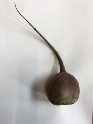 Produce / Vegetable / Organic Beet