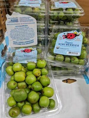 Produce / Fruit / Organic Kiwi Berry, 6 oz.