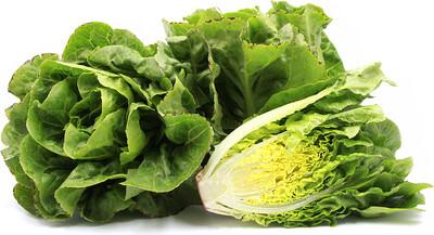 Produce / Vegetable / Organic Green Little Gem Lettuce