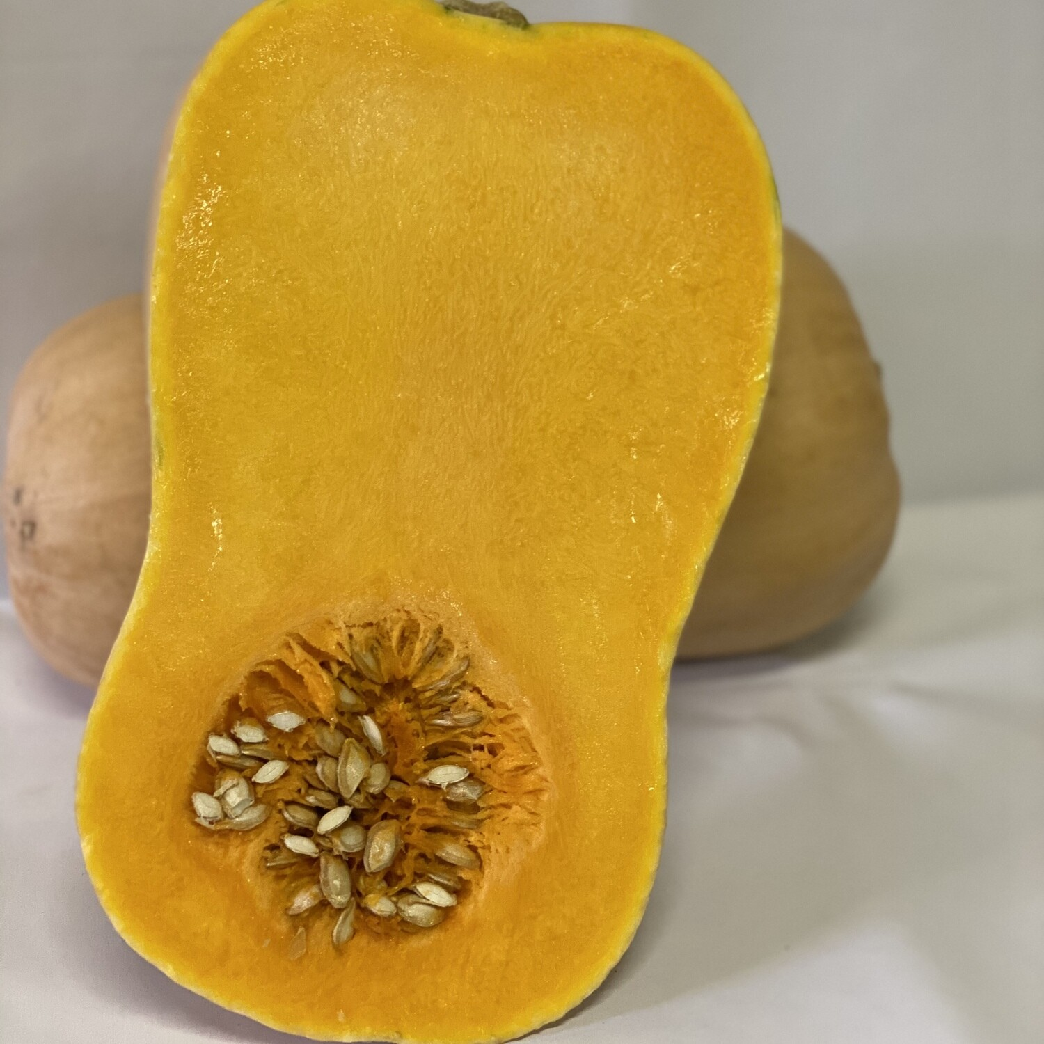 PUMPKIN BUTTERNUT MED-LARGE (EACH)
