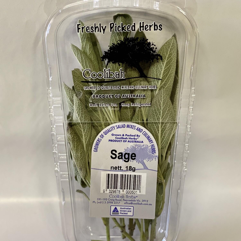 SAGE (18G PUNNET)