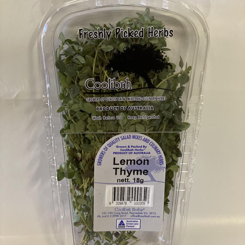 THYME LEMON (18G PUNNET)