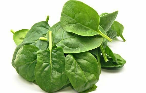 BABY SPINACH LEAVES LOOSE