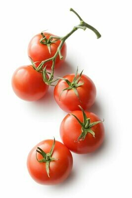 TOMATOES TRUSS (4 PIECES)