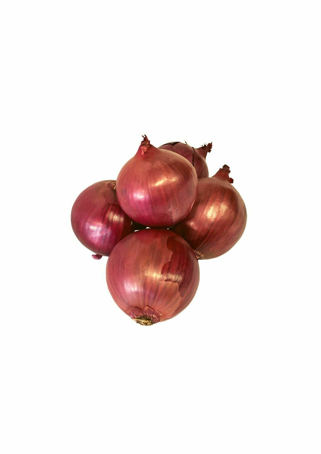 ONIONS RED LARGE (EACH)