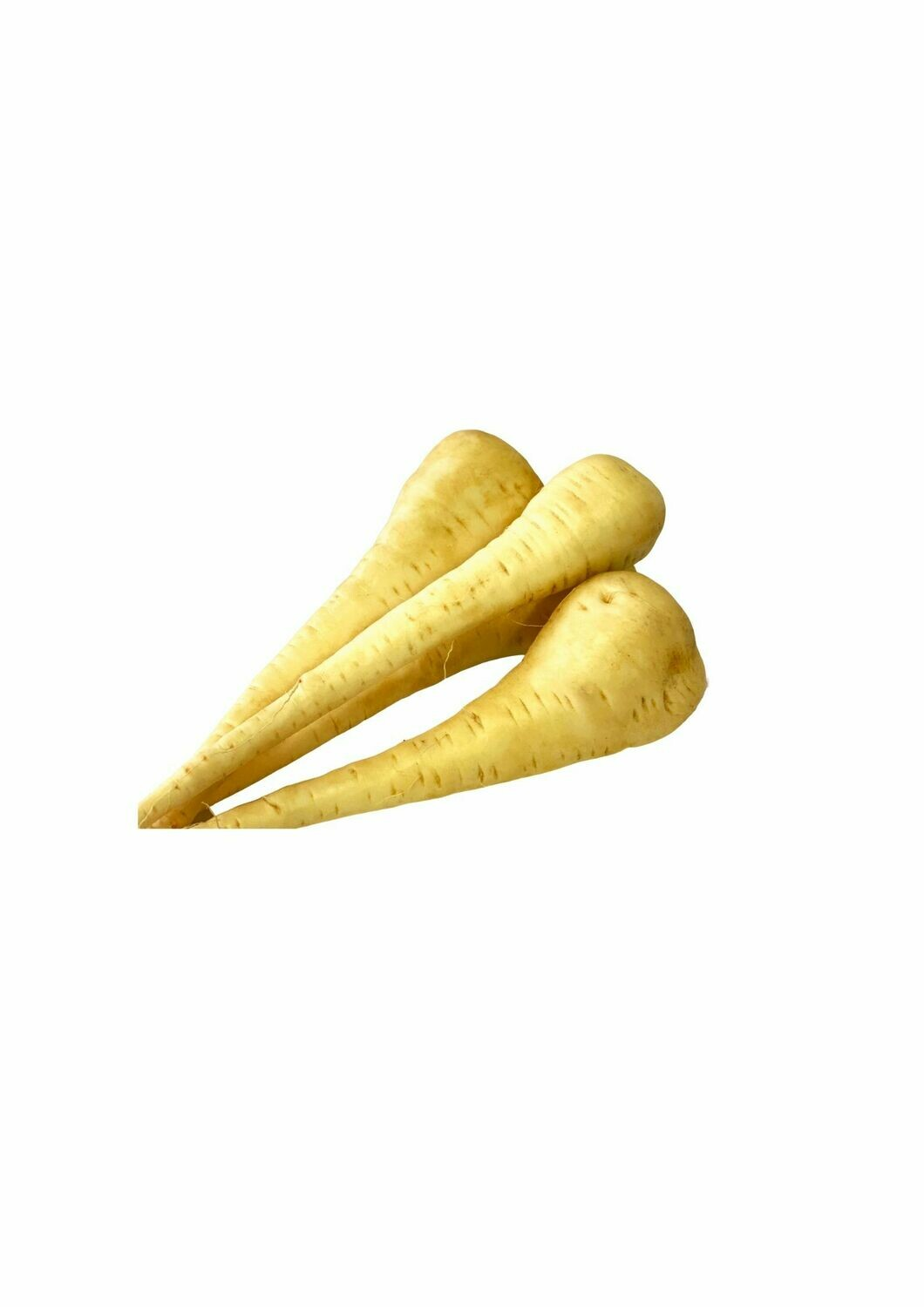 PARSNIPS (EACH)